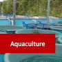 Aquaculture Courses Online