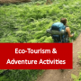Ecotourism & Adventure Activities Courses Online