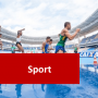 Sports Courses Online