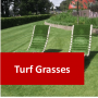 Turf Courses Online