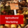 Agricultural Marketing 100 Hours Certificate Course