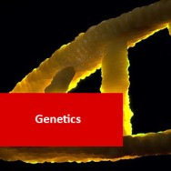 Genetics 100 Hours Certificate Course