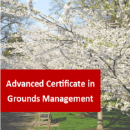 Advanced Certificate in Horticulture (Grounds Management)