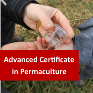 Permaculture (Permanent Agriculture) 400 Hours Advanced Certificate Course