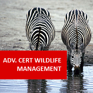 Wildlife Management 400 Hours Advanced Certificate Course