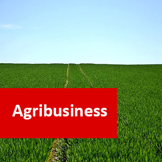 Agribusiness 1200 Hours Higher Advanced diploma
