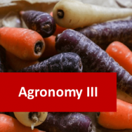 Agronomy III (Root Crop Production) 100 Hours Certificate Course