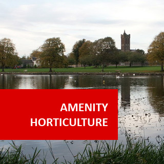 Basic Amenity Horticulture 100 Hours Certificate Course