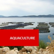 Aquaculture BAG211 CLD