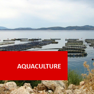 Aquaculture 100 Hours Certificate Course