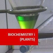Basic Plant Biochemistry 100 Hours Certificate Course