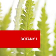 Botany I - Plant Physiology And Taxonomy