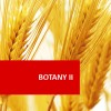 Botany II Plant Growth and Development 100 Hours Certificate Course