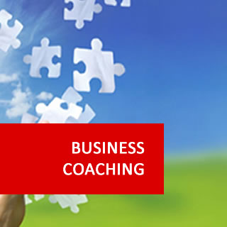 Business Coaching 100 Hours Certificate Course