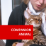 Online Animal Courses - Take a Course Studying your favourite Animal