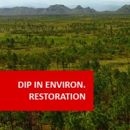 Environmental Restoration 600 Hours Diploma