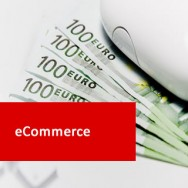eCommerce 100 Hours Certificate Course