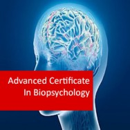 Advanced Certificate In Biopsychology
