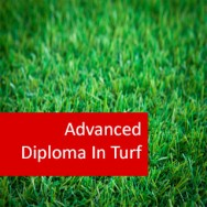 Turf Care 800 Hours Advanced Diploma
