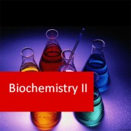 Biochemistry II (Molecules) (Pre-Medical Program)
