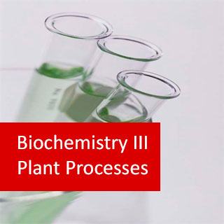 Biochemistry III Plant Processes 100 Hours Certificate Course