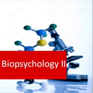 Biopsychology II Level 3 Certificate Course