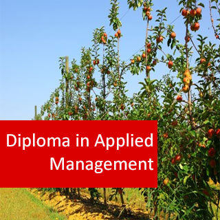 Arboriculture Applied Management 800 Hours Advanced Diploma