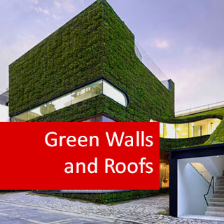 Green Walls and Roofs 100 Hours Certificate Course