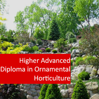 Ornamental Horticulture 1200 Hours Higher Advanced Diploma