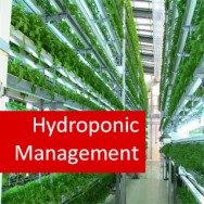 Hydroponics II - Hydroponics Management 100 Hours Certificate Course