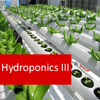 Hydroponics III 100 Hours Certificate Course