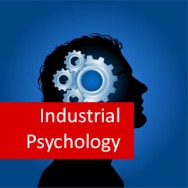 Industrial Psychology 100 Hours Certificate Course