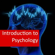 Introduction to Psychology 100 Hours Certificate Course