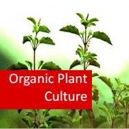 Organic Plant Culture 100 Hours Certificate Course