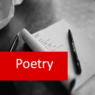 Poetry 100 Certificate Course