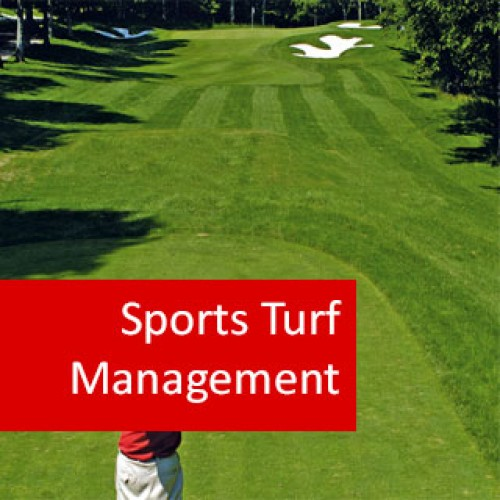 Turf Management electives subjects in college