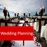 Wedding Planning BTR104 CLD
