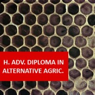 Higher Advanced Diploma In Agriculture - Alternative Agriculture
