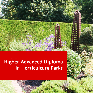 Horticulture - Parks 1200 Hours Higher Advanced Diploma