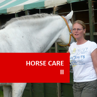 Horse Care II 100 Hours Certificate Course
