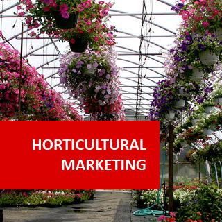 Horticultural Marketing 100 Hours Certificate Course