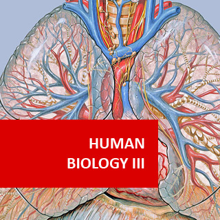 Human Biology III - Cardio Respiratory Performance 100 Hours Certificate Course