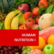 Human Nutrition I 100 Hours Certificate Course