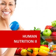 Human Nutrition II 100 Hours Certificate Course