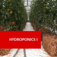 Hydroponics I 100 Hours Certificate Course