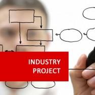 Industry Project II