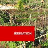 Irrigation 100 Hours Certificate Course