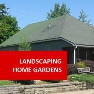 Landscaping Home Gardens