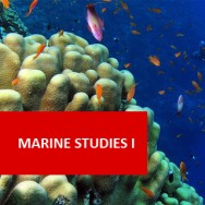 Marine Studies I 100 Hours Certificate Course