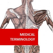 Medical Terminology (Pre-Medical Program)